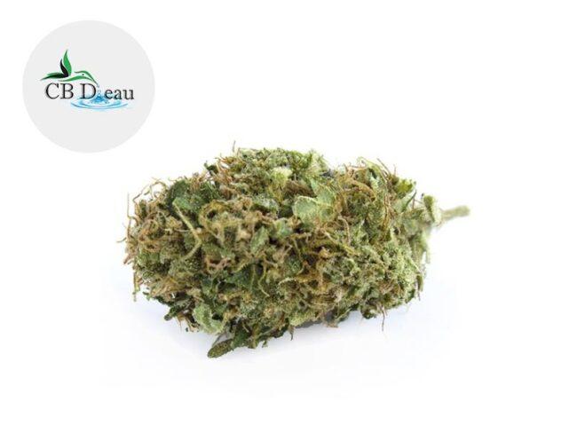 Amnesia Haze Fleur CBD 5% Greenhouse - CBDeau