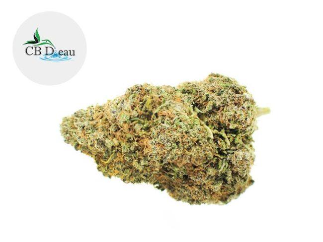 Sour Diesel Fleur CBD 5% Greenhouse - CBDeau