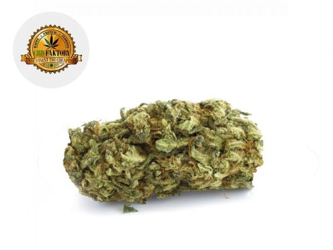 Orange Bud Fleur CBD 10% Indoor - Cbd Faktory