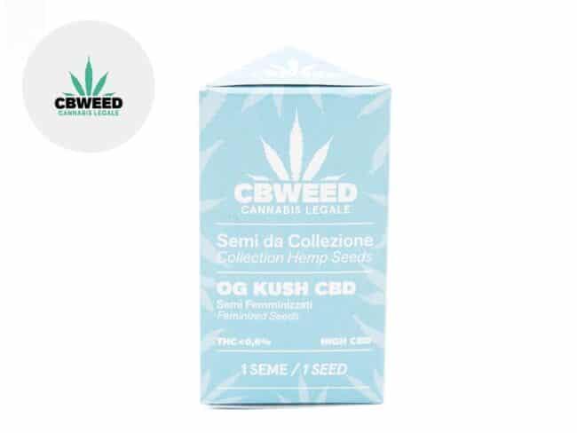Graines Og Kush CBD autofloraison - Cbweed