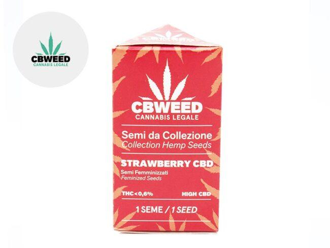 Graines Strawberry CBD autofloraison - Cbweed