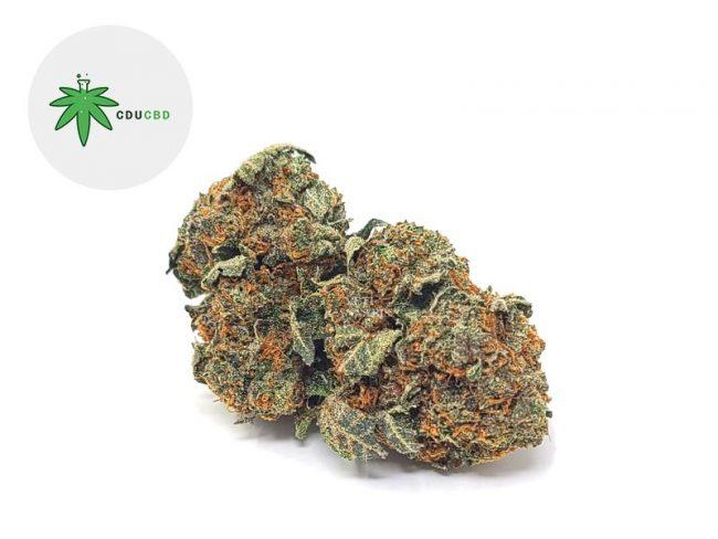 Cookie Kush Fleur CBD 16% Indoor - Cducbd
