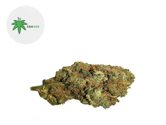 Orange Bud Fleur CBD 15% Greenhouse - Cducbd