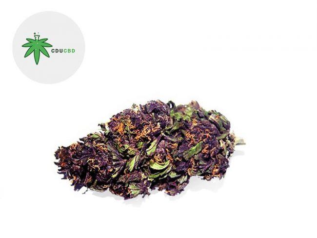 Purple Haze Fleur CBD 19% Indoor - Cducbd