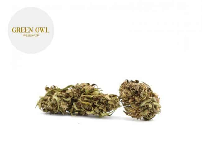 Og Kush Fleur CBD 11% Greenhouse - Greenowl