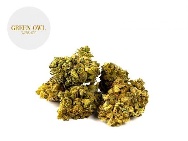 Orangello Fleur CBD 7% Indoor - Greenowl