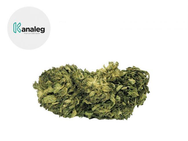 Amnesia Haze Fleur CBD 5% Greenhouse - Kanaleg