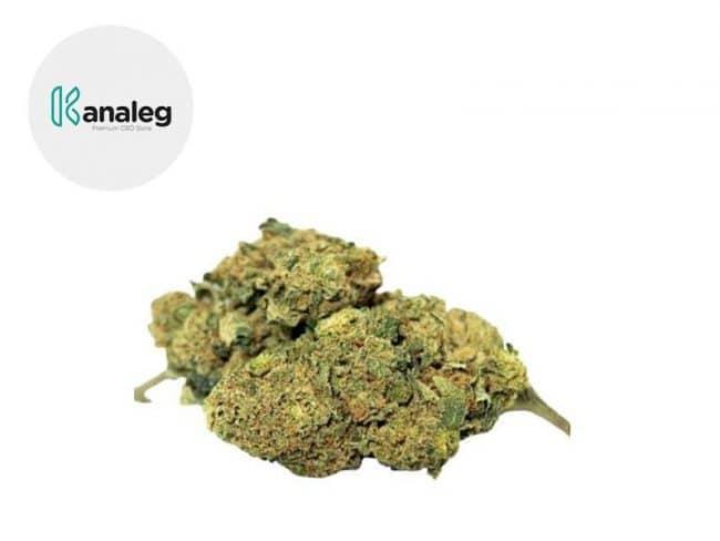 Gorilla Glue Fleur CBD 4% Indoor - Kanaleg