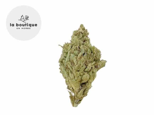 Super Silver Haze Fleur CBD 10% Greenhouse - La Boutique en Herbe