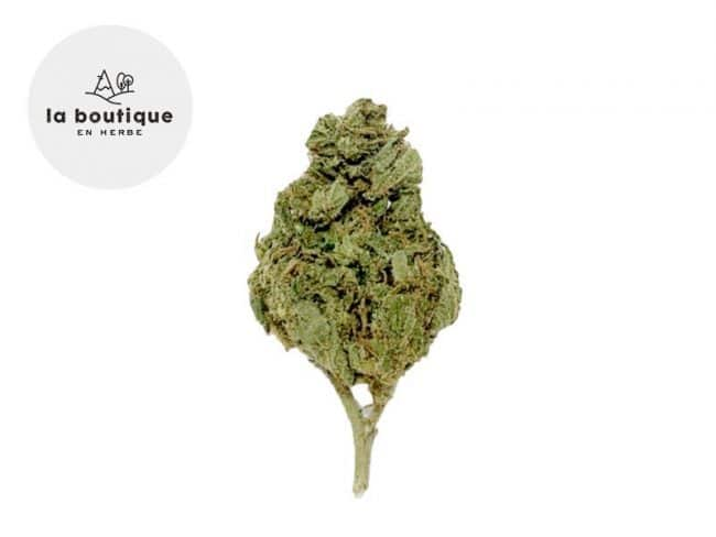 Mandarine Fleur CBD 14% Indoor - La Boutique en Herbe