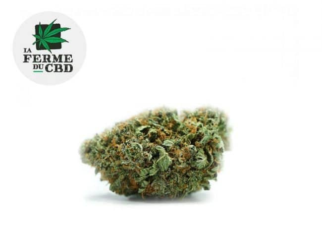 Strawberry Fleur CBD 13% Indoor - La Ferme du CBD
