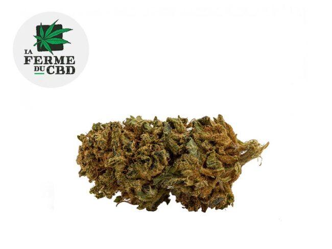 Super Skunk Fleur CBD 11