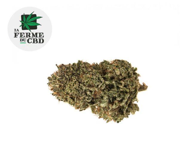 Sour Diesel Fleur CBD 16% Indoor - La Ferme du CBD