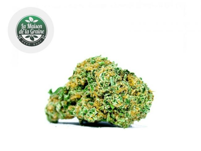 Super Lemon Haze Fleur CBD 15% Indoor - La Maison De La Graine