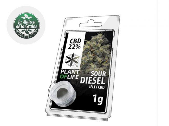 Sour Diesel Résine CBD 22% - Plantoflife