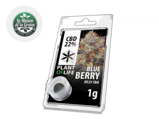Blueberry Résine CBD 22% - Plantoflife
