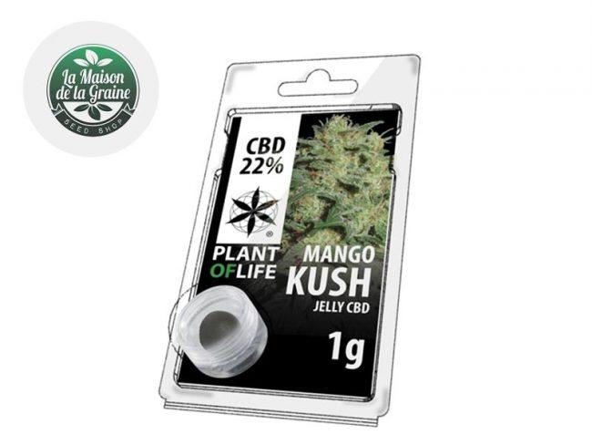 Mango Kush Résine CBD 22% - Plantoflife