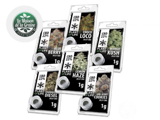 Pack Découverte Résine CBD (6g) - Plantoflife