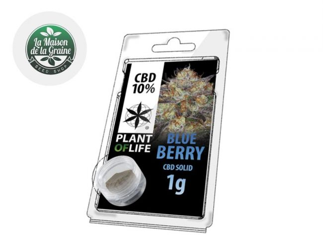 Blueberry Pollen CBD 10% - Plantoflife