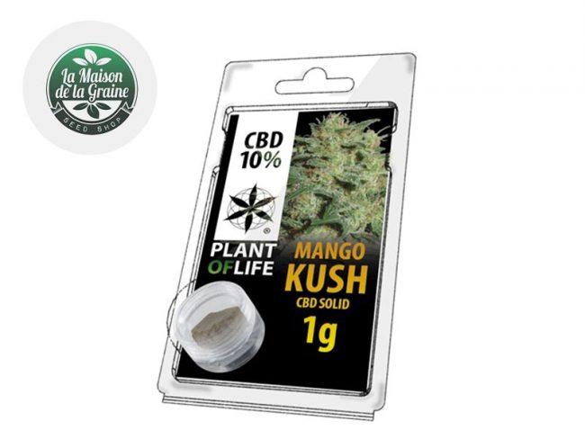 Mango Kush Pollen CBD 10% - Plantoflife