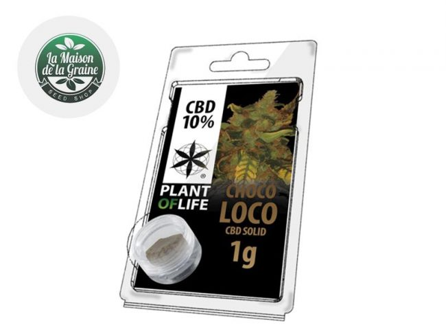 Chocoloco Pollen CBD 10% - Plantoflife