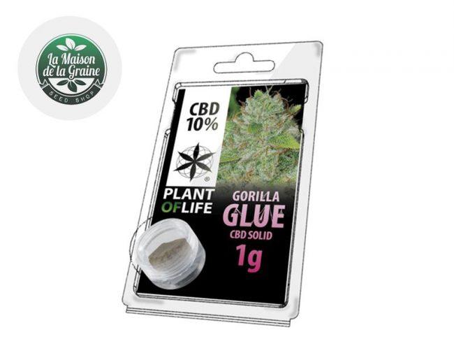 Gorilla Glue Pollen CBD 10% - Plantoflife
