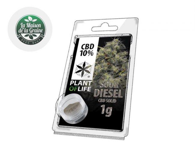 Sour Diesel Pollen CBD 10% - Plantoflife