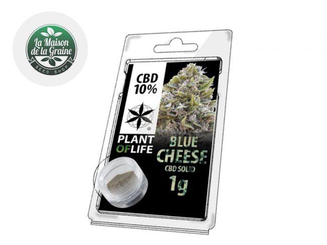 Blue Cheese Pollen CBD 10% - Plantoflife