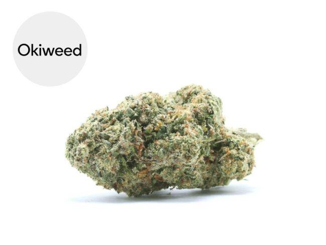 Bubble Gum Fleur CBD 21% Indoor - Okiweed