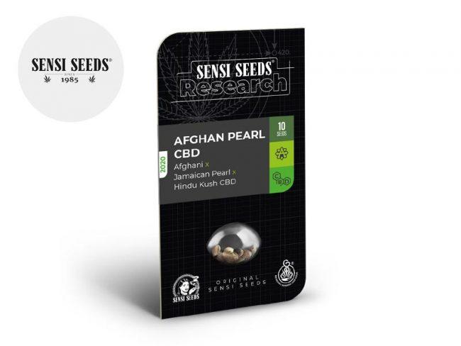 Graines Afghan Pearl CBD autofloraison - Sensi Seeds