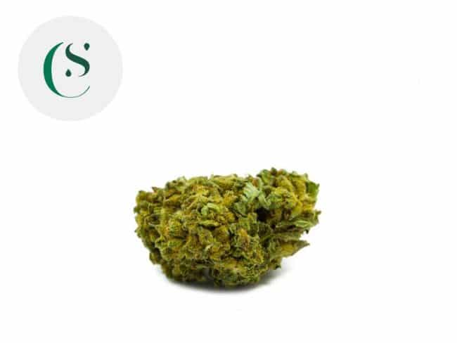 Ringo's Gift Fleur CBD 7% Greenhouse - Saveurs CBD