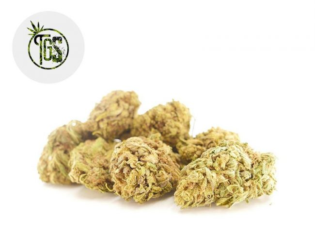 ACDC Fleur CBD 9% Greenhouse - The Green Store