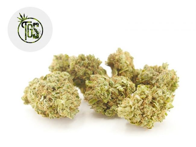 Og Kush Fleur CBD 5% Indoor - The Green Store