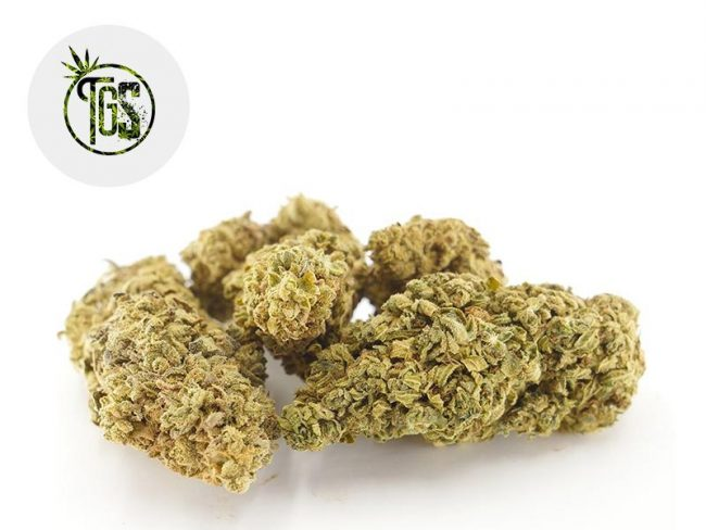Vanilla Kush Fleur CBD 5% Indoor - The Green Store