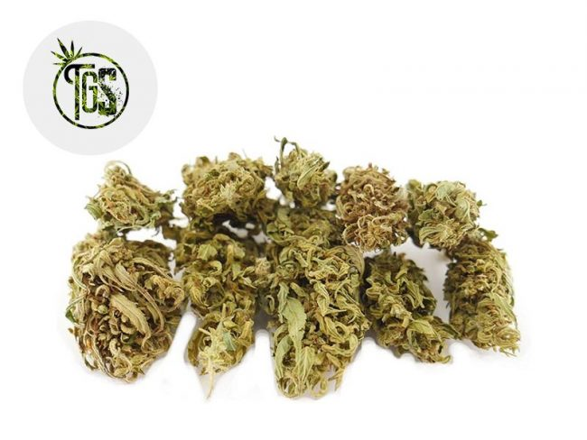 Green Grape Fleur CBD 3% Outdoor - The Green Store