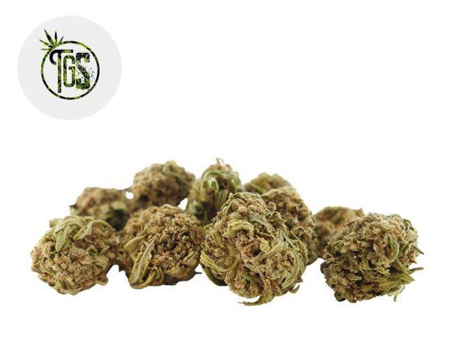 White Widow Fleur CBD 5% Greenhouse - The Green Store