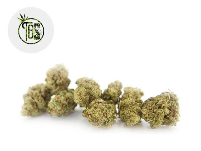 Blue Dream Fleur CBD 6% Greenhouse - The Green Store