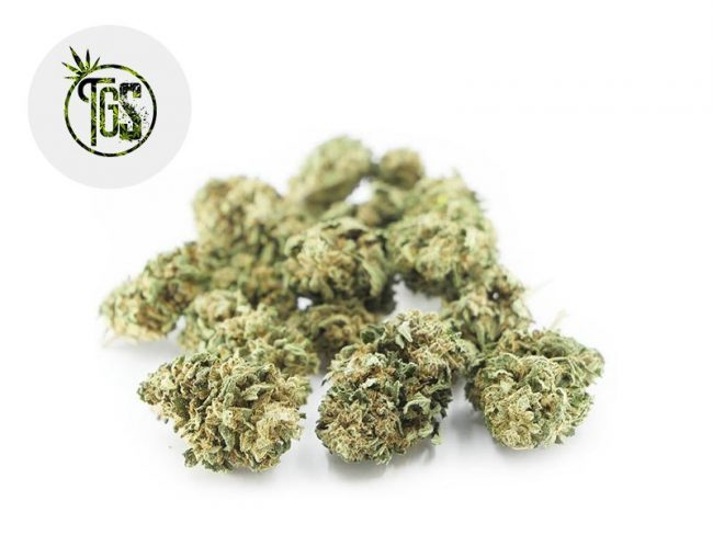 Bubba Kush Fleur CBD 4% Outdoor - The Green Store