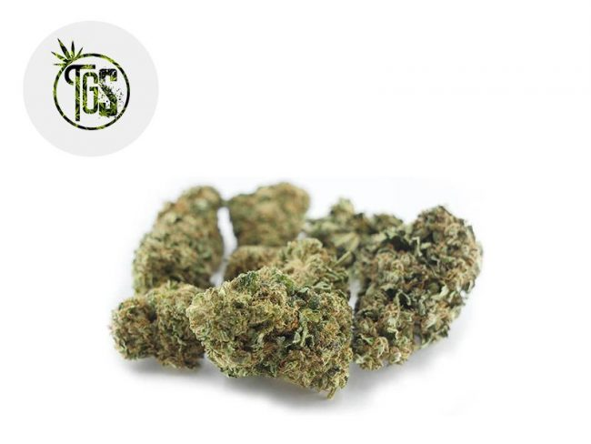 Blue Dream Fleur CBD 5% Outdoor - The Green Store