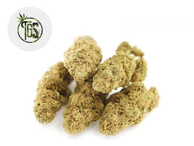 Tutti Frutti Fleur CBD 12% Indoor - The Green Store