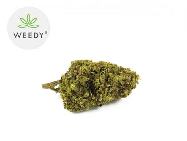 Remedy Fleur CBD 8% Indoor - Weedy