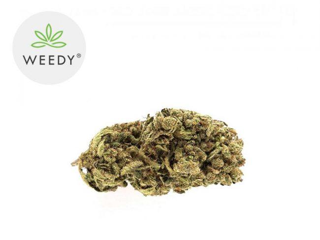 Ny Diesel Fleur CBD 13% Indoor - Weedy