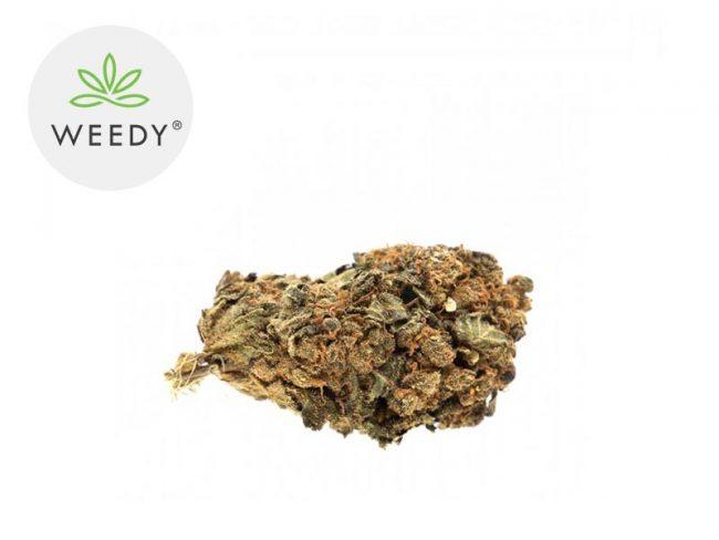 Harlequin Fleur CBD 11% Indoor - Weedy