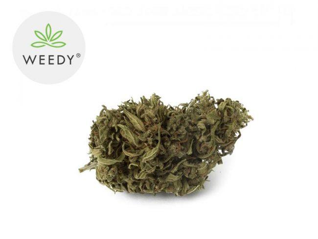 Sweet Karma Fleur CBD 7% Outdoor - Weedy