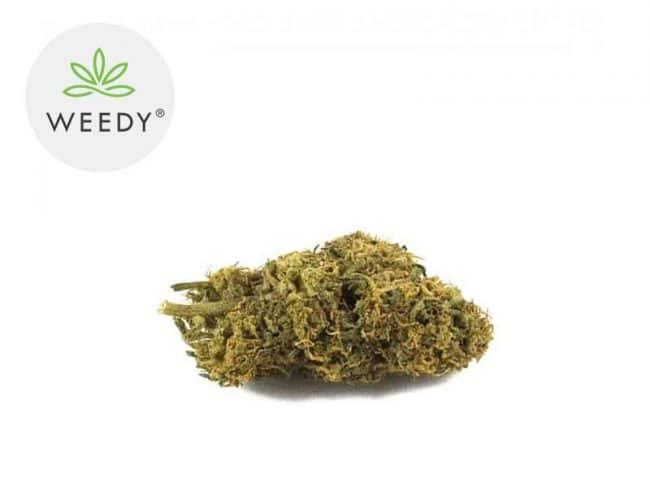 Caramel Candy Fleur CBD 7% Indoor - Weedy