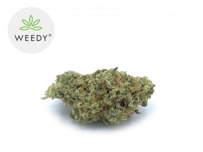 Skywalker Fleur CBD 7% Indoor - Weedy