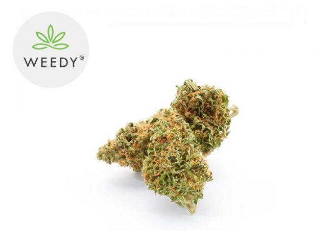 Super Silver Haze Fleur CBD 11% Indoor - Weedy