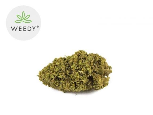 Cannatonic Fleur CBD 7% Indoor - Weedy