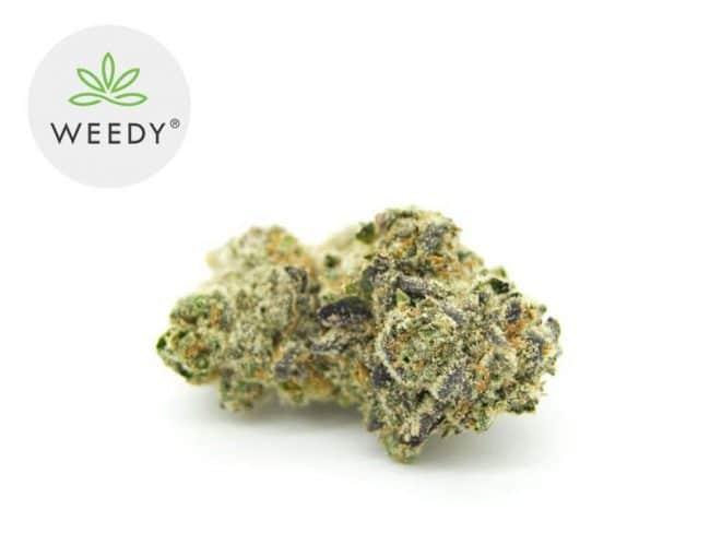 Green Gelato Fleur CBD 7% Greenhouse - Weedy