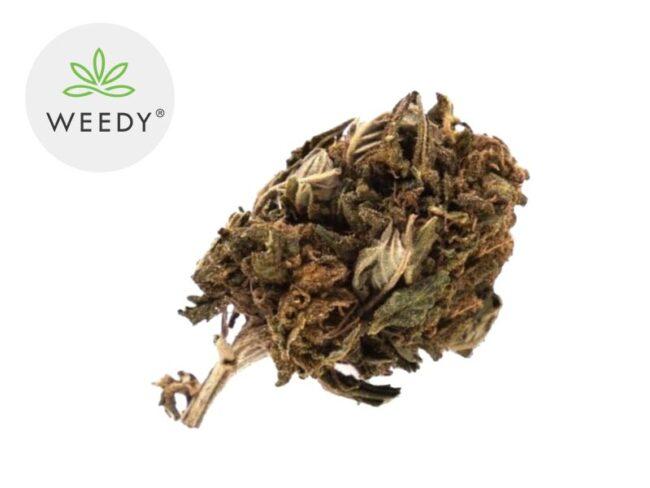 Super Skunk Fleur CBD 4% Outdoor - Weedy